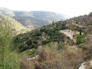 The Jerusalem Hills