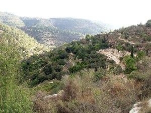 jerusalem-sataf-view